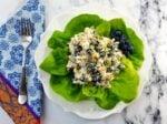 Blueberry Chicken Salad with Basil Mint Yogurt Dressing