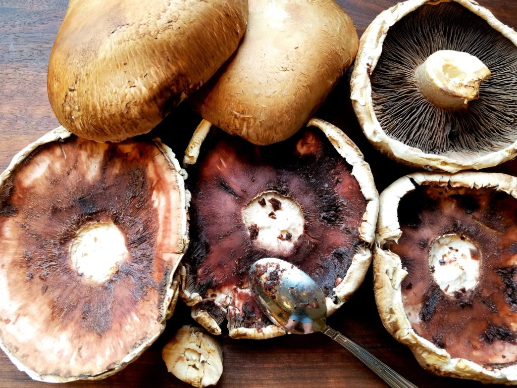 Portobello Mushroom Caps Removing Gills