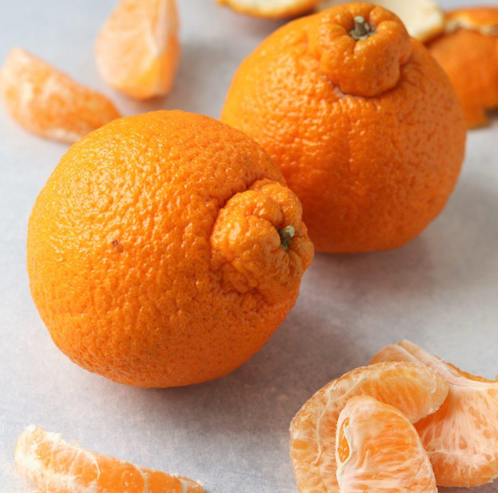 Sumo Citrus Oranges